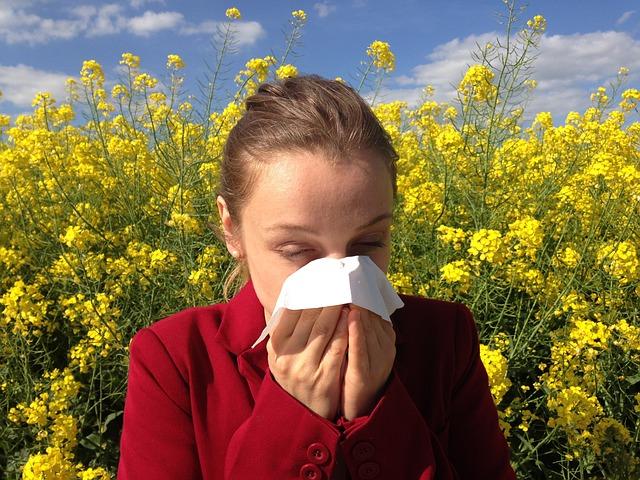alergická slečna