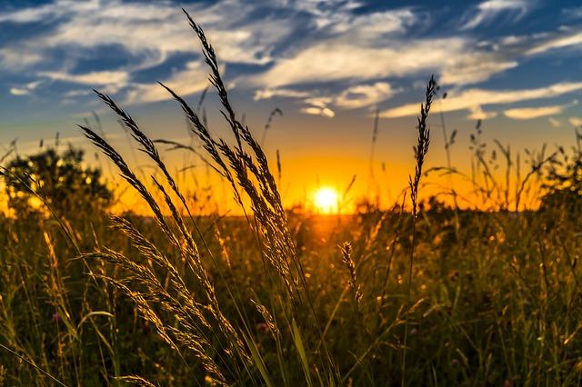 západ slunce za loukou