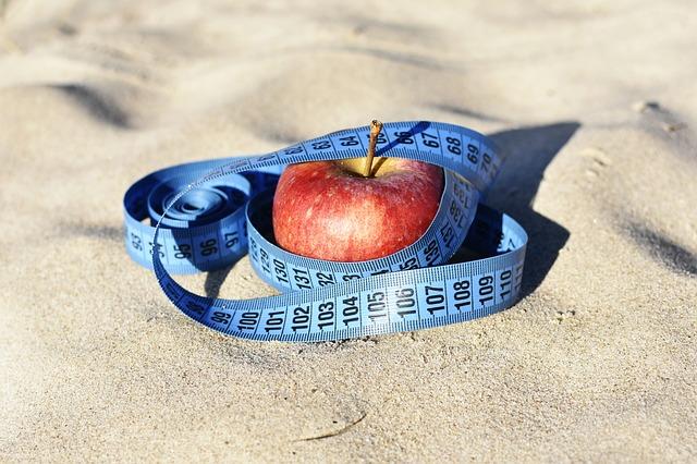 Znázornění diety.jpg