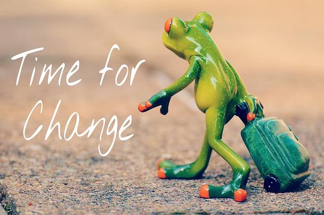 žába s kufrem, čas na změnu.jpg